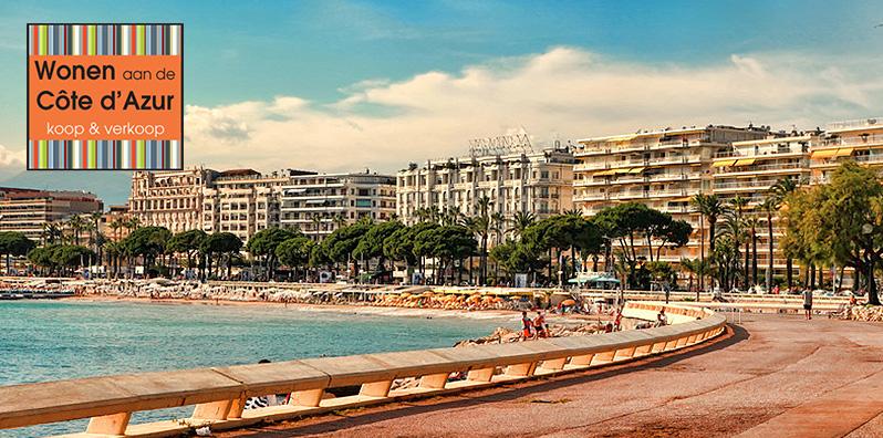 Header-mailing-April-Cannes-NL