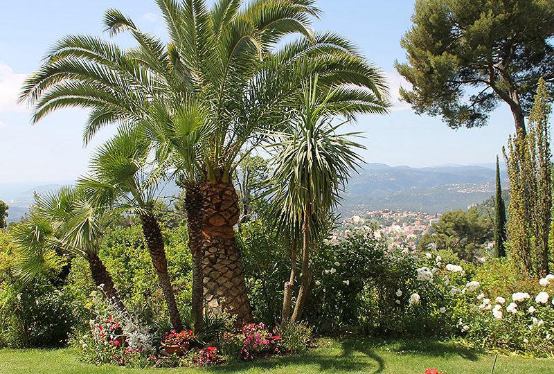 Grasse-luxe-villa-met-zeezicht-en-zwembad-tuin